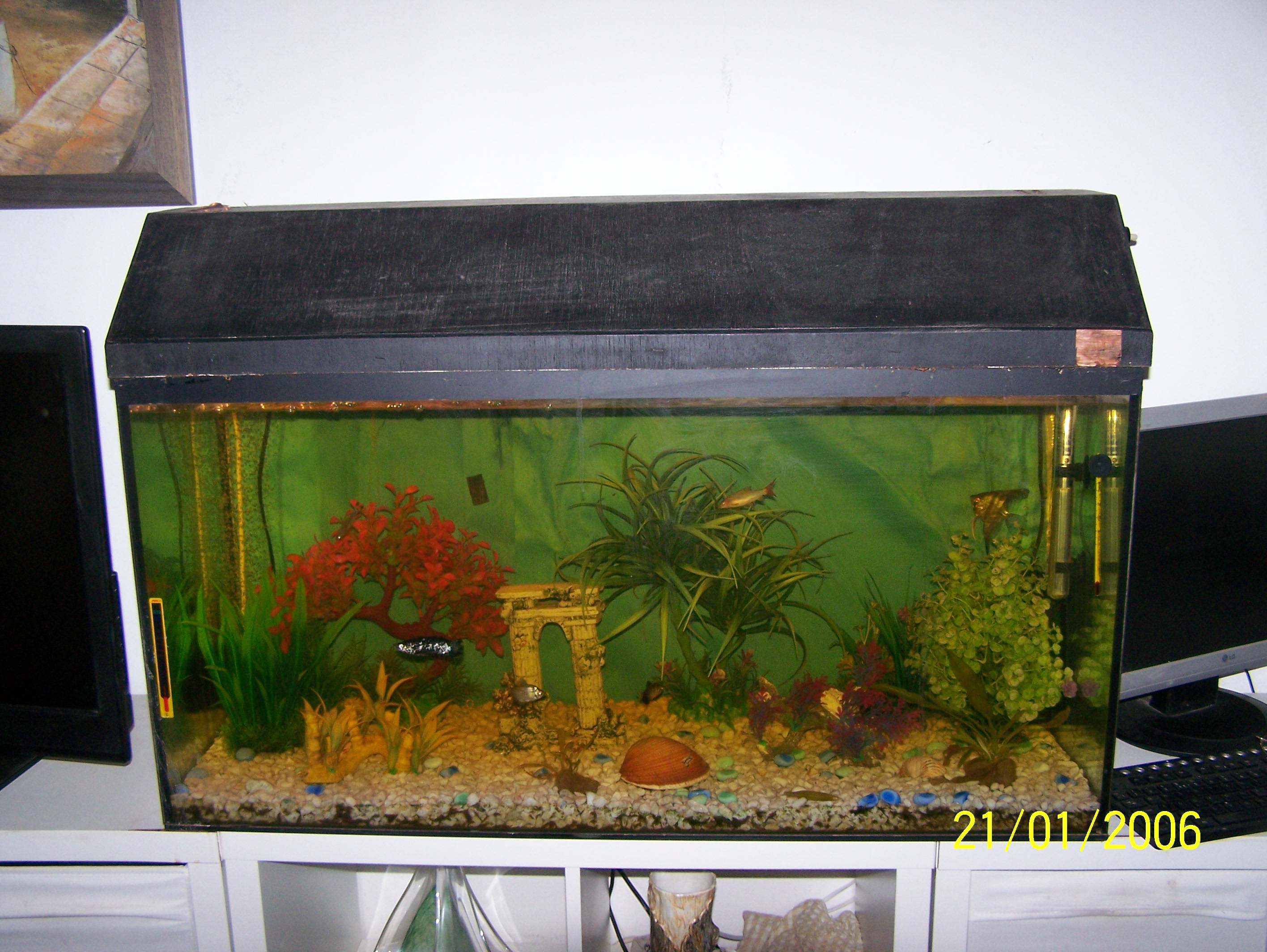 For sale: Various items including fish tank, coffee table, furniture